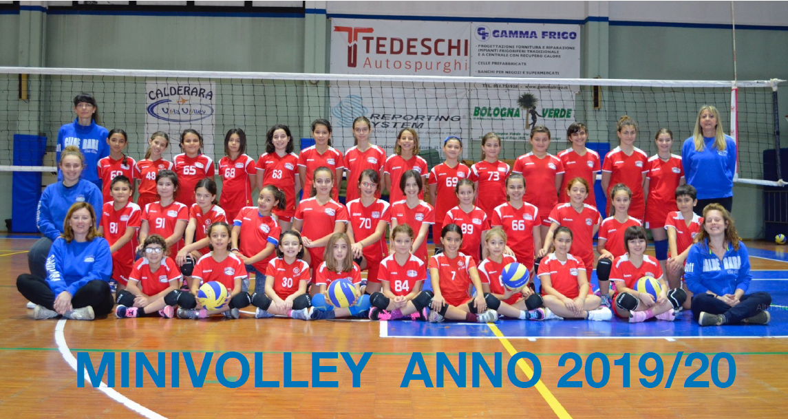 MiniVolley_2019-2020.PNG